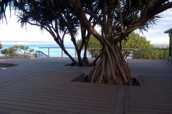 caloundra-surf-club-refurbishment-splendour-08